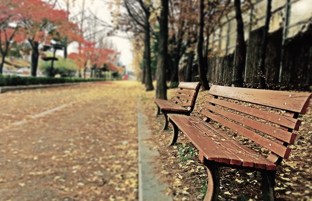 empty-streetside-bench