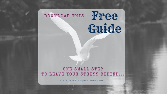 Free Guide-Find the small step to leaving your stress behind.